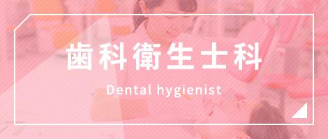 歯科衛生士科